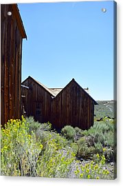 Bodie In Bloom Acrylic Print