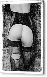 Body #3681 Acrylic Print