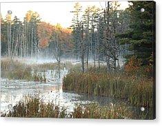 Bog Fog Acrylic Print