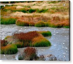 Boiling Mud And Grass Acrylic Print