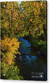 Boise Afternoon Acrylic Print