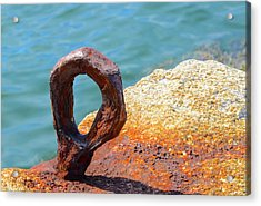Acrylic Print featuring the photograph Bolted by Corinne Rhode