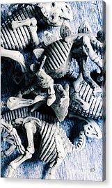 Bones From A Mass Extinction Event Acrylic Print