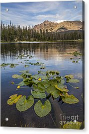 Bonnie Lake And Hayden Peak Acrylic Print