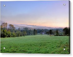 Bonnyvale Field Acrylic Print by Tom Singleton