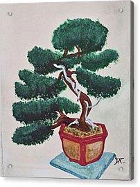 Bonsai #3 Acrylic Print