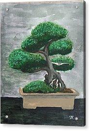 Bonsai #2 Acrylic Print