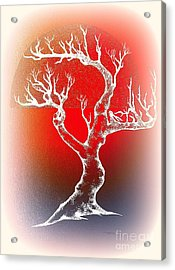 Bonsai Red Acrylic Print