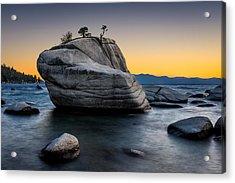 Bonsai Rock Acrylic Print