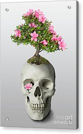 Acrylic Print featuring the painting Bonsai Skull by Ivana Westin