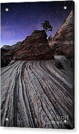 Bonzai In The Night Utah Adventure Landscape Photography By Kaylyn Franks Acrylic Print