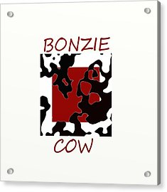 Bonzie Cow Acrylic Print