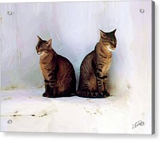 Bookends - Rdw250805 Acrylic Print