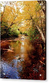 Acrylic Print featuring the photograph Boone Fork Stream by Meta Gatschenberger
