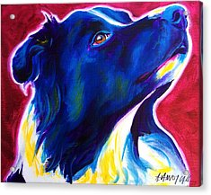 Border Collie - Bright Future Acrylic Print by Alicia VanNoy Call