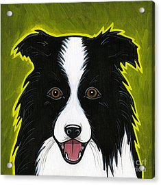 Border Collie Acrylic Print by Leanne Wilkes