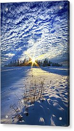 Acrylic Print featuring the photograph Born As We Are by Phil Koch