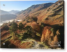 Borrowdale From Castle Crag Acrylic Print by Bryan Attewell
