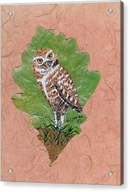 Borrowing Owl Acrylic Print