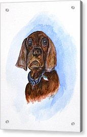 Bosely The Dog Acrylic Print