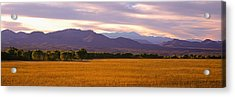 Bosque Del Apache National Wildlife Acrylic Print by Panoramic Images