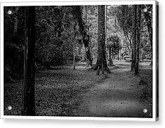 Bosque Do Silencio-campos Do Jordao-sp Acrylic Print