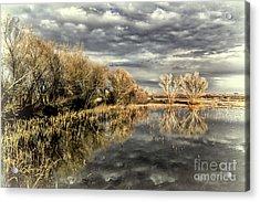 Bosque Dusk Acrylic Print