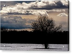 Acrylic Print featuring the photograph Bosque Sunset by Britt Runyon