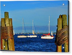 Boston Harbor Picture Perfect Acrylic Print by Andrew Dinh