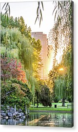 Boston Public Garden Sunrise Acrylic Print