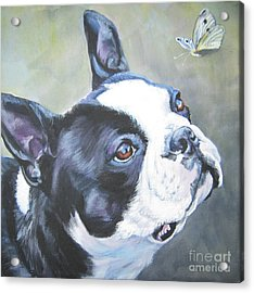 boston Terrier butterfly Acrylic Print