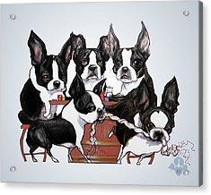 Boston Terrier - Dogs Playing Poker Acrylic Print