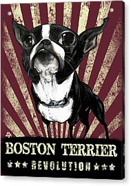 Boston Terrier Revolution Acrylic Print