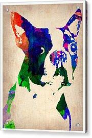 Boston Terrier Watercolor Acrylic Print by Naxart Studio