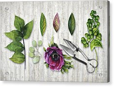 Botanica I Botanical Flower, Leaf And Berry Nature Study Acrylic Print by Tina Lavoie