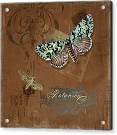 Botanica Vintage Butterflies N Moths Collage 1 Acrylic Print