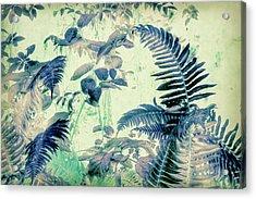 Acrylic Print featuring the mixed media Botanical Art - Fern by Bonnie Bruno