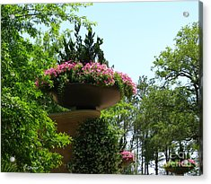 Botanical Sky Acrylic Print by Greg Patzer