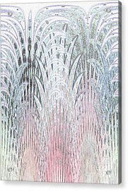 Botanical Weave Acrylic Print by Ann Johndro-Collins