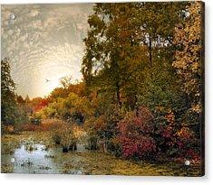 Botanical Wetlands Acrylic Print by Jessica Jenney