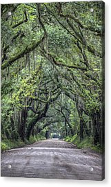 Botany Bay Country Road Acrylic Print by Dustin K Ryan