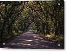 Botany Bay Road Acrylic Print by Rick Berk