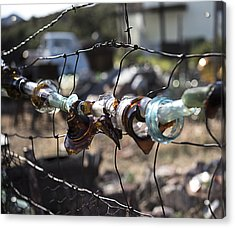 Bottle Fence Acrylic Print by Annette Berglund