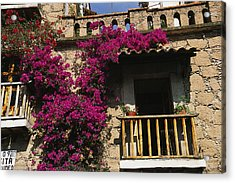 Bougainvillea Flowers On The Balcony Acrylic Print by Gina Martin
