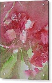 Bougainvillea II Acrylic Print by Debra LePage