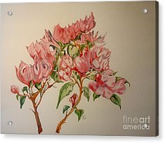 Acrylic Print featuring the painting Bougainvillea by Iya Carson