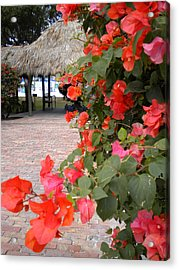 Acrylic Print featuring the painting Bouganvilla 2 by Renate Nadi Wesley