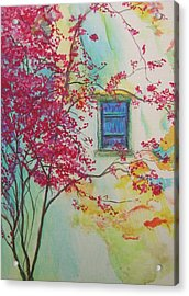 Bouganvilla And Blue Shutter Acrylic Print by Lizzy Forrester