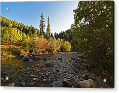 Boulder Colorado Canyon Creek Fall Foliage Acrylic Print