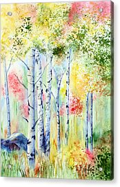 Boulder Grove Acrylic Print